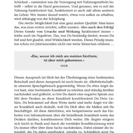 Leseprobe Kapitel 2 - Das Gesetz von Ursache und Wirkung - Seite 51